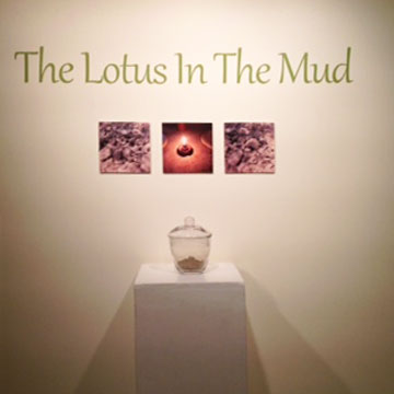 Lotus in the Mud